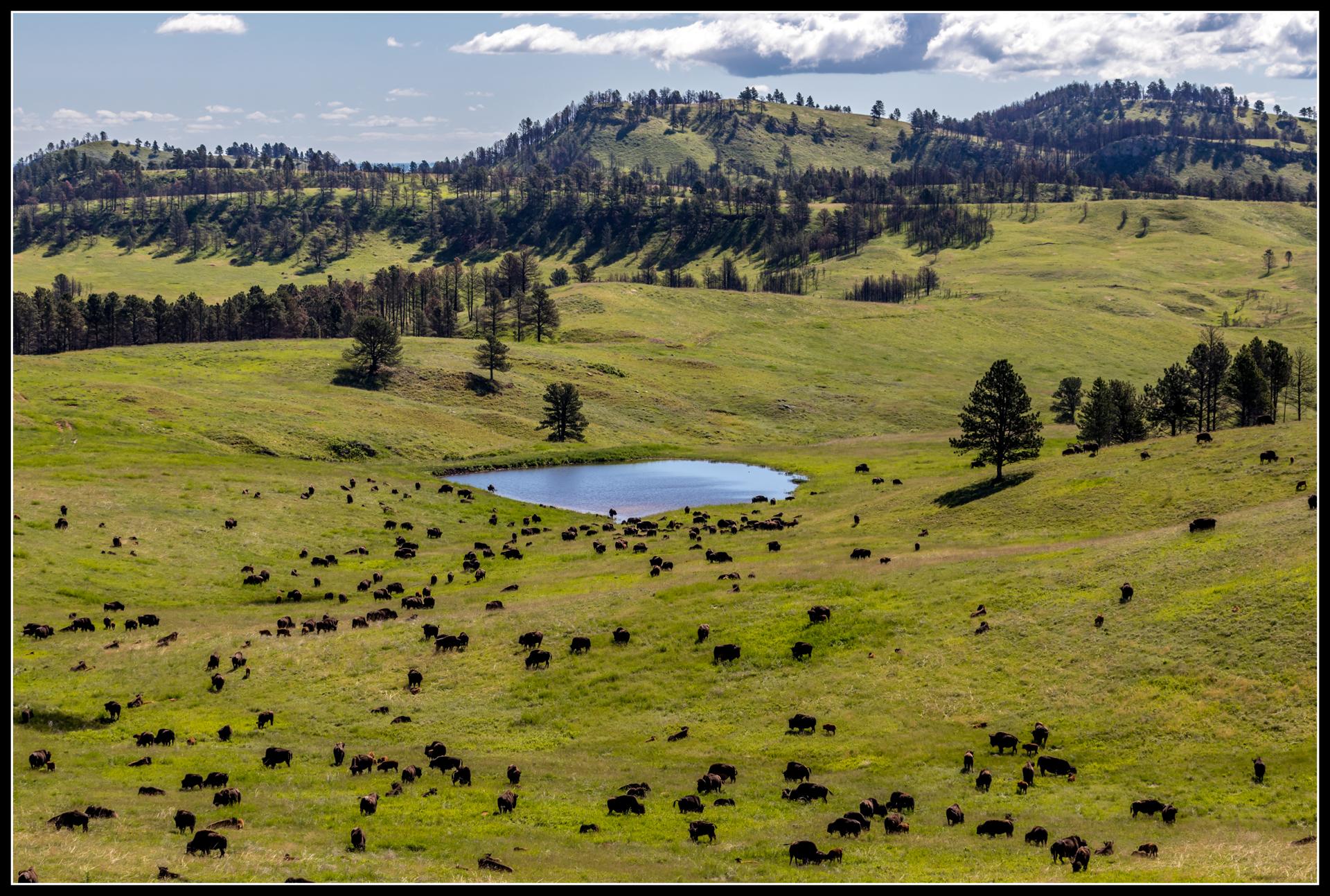 """<i class=""""fa fa-film""""></i>– Sur la route de Custer et des Black Hills."""